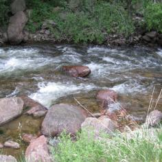 Even in a somewhat dry season for Colorado, there was plenty of water in South Boulder Creek, especially up near the visitor's center. (Chris Etling/Arizona Daily Sun)