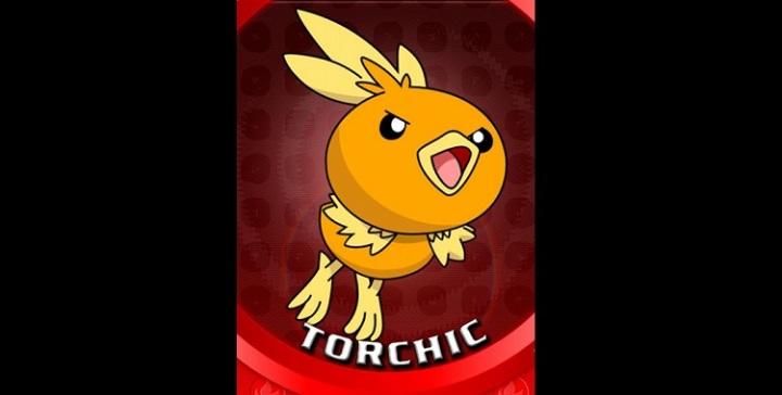 torchic