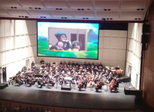 A Link cosplayer in the audience playing the ocarina.